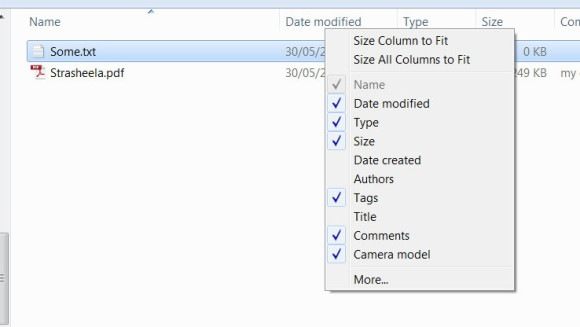 File Metadata integration with Windows Explorer